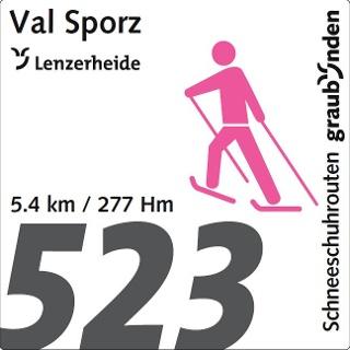 Routennummer 523
