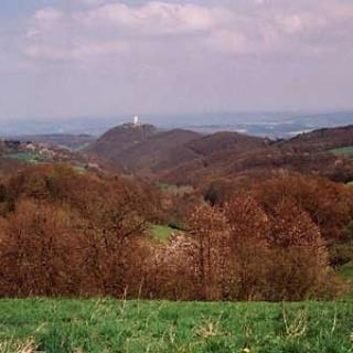 Vom Steinfeld hat man einen Überblick über das gesamte Wandergebiet.