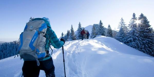 Schneeschuhwandern in der Alpenregion