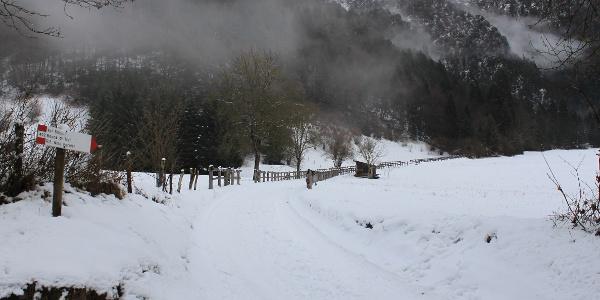 Chinaec im Winter