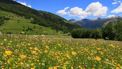 Leuchtende Farben im Val Müstair.