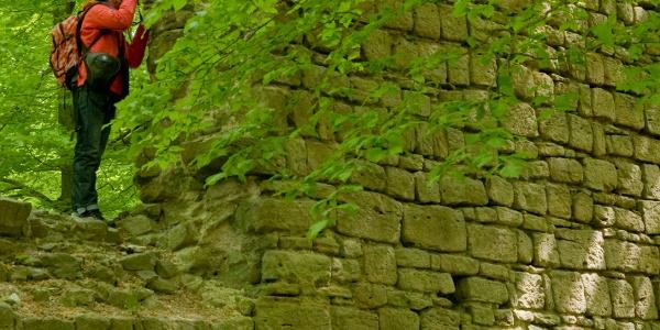 Ruinen Burg Rabenswald