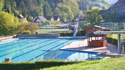 Outdoor Swimming Pool. Black Forest