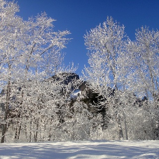 Winterlandschaft in Reuthe