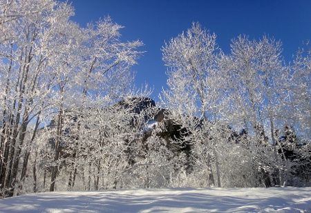 Winterlandschaft in Reuthe