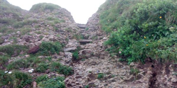 Weg zwischen Hochgrat und Brunnenauscharte