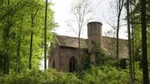 Amorbacher Waldromantikweg aka. A9