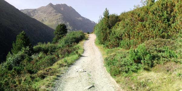 Aufstieg zur Martin Busch Hütte