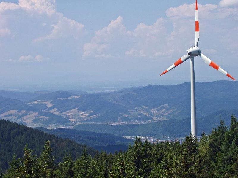 Oberwolfach - Steigleskopf-Tour