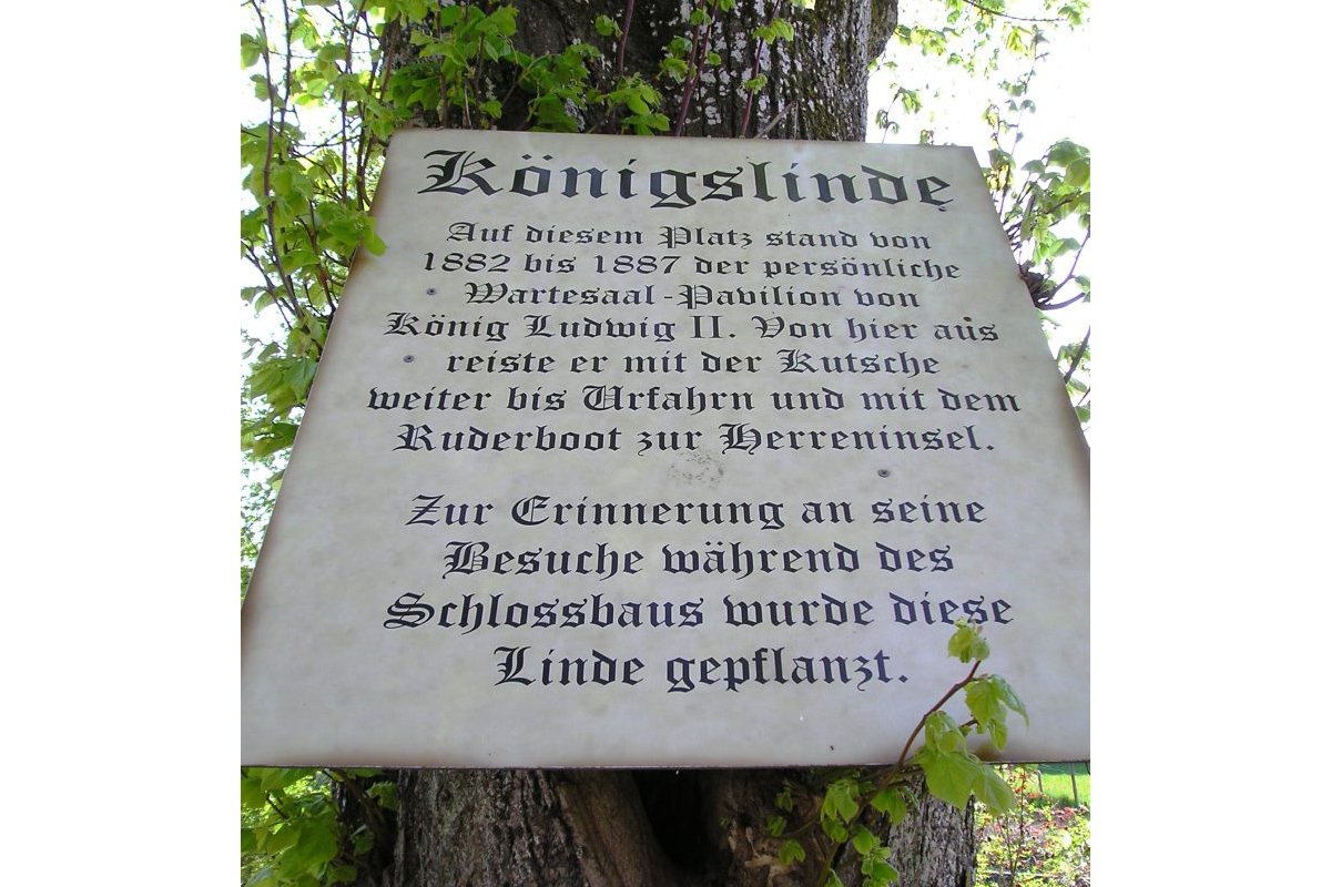 König Ludwig II - Linde in Rimsting