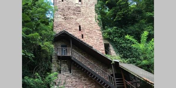 Zollburg Dauchstein