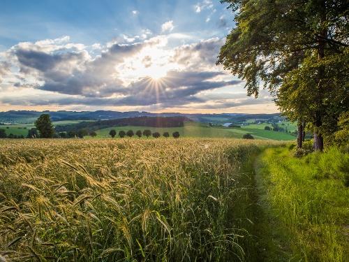 Bauernland-Radroute