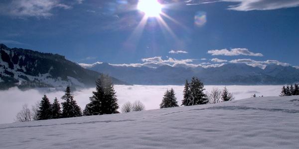 Top-Aussicht zu den Berner Alpen.