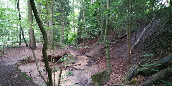 Tennenbach bei Spardorf