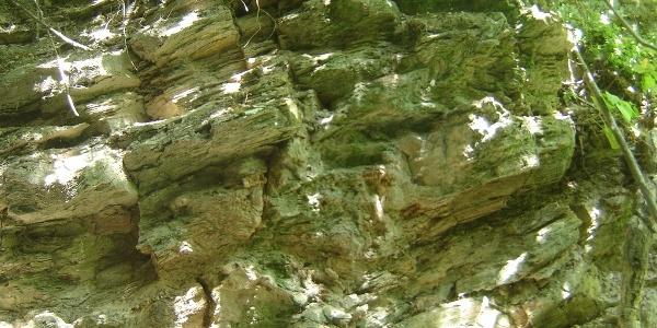 Metamorf kőzet (kvarcfillit) gyűrődése az Ördögárokban