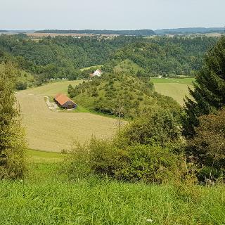 Neckartal beim Hofgut Neckarburg