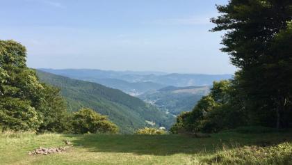 Blick vom Klintzkopf ins Vallée de Sondernach