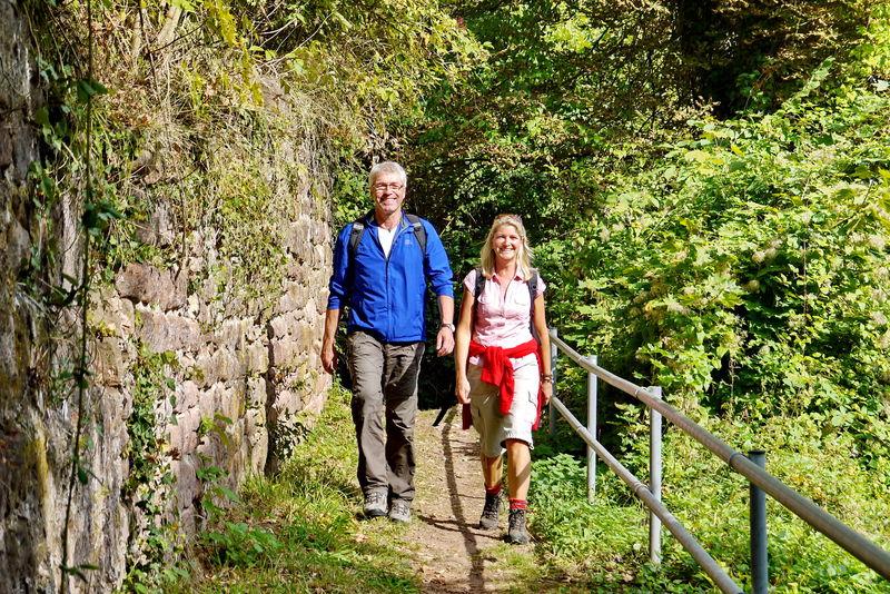 Schöne Wanderwege rund um die Festungsruine Hohenburg in Homburg