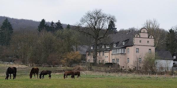 KTA_Forstamt Arnsberg