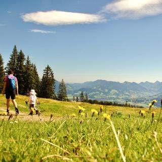 Hörner-Panorama-Tour zwischen Bolsterlang und Ofterschwang