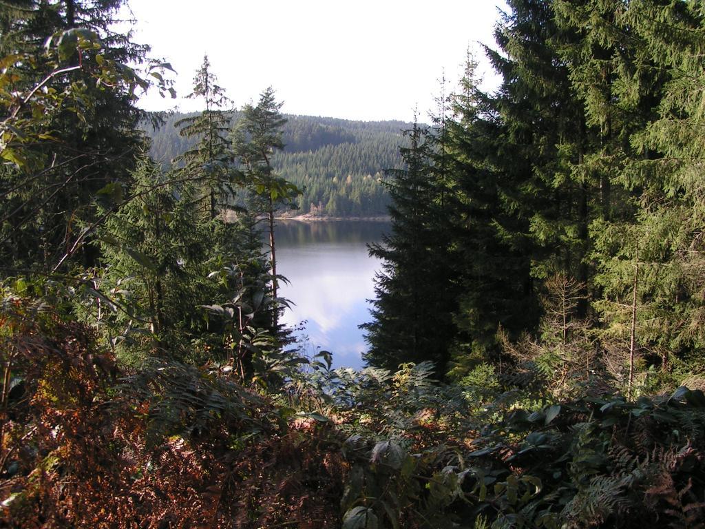 Blick vom Gerstenberg auf die Talsperre Eibenstock