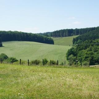 Aussicht von Gönnersdorf