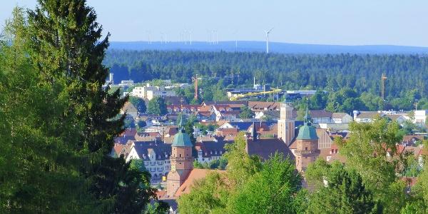 Blick auf Freudenstadt (Steinwaldstraße - Zoom)