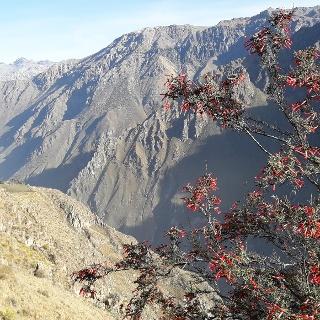Ausblick in den Anden
