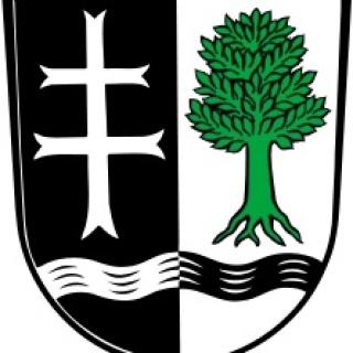 Wappen Holzgünz