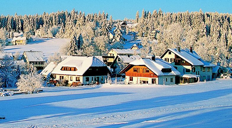 Winterwandern rund um den Kniebis