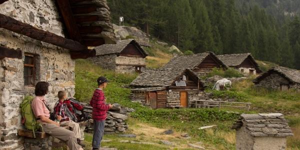 Auf der Alpe Quadrella di Fuori.