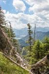 die Gipfel der Tiroler Alpen - @ Autor: Julian Knacker - © Quelle: Pfronten Tourismus