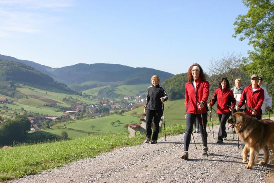 """""""König der Wanderwege"""" Panoramaweg Mühlenbach / Kleine Runde"""