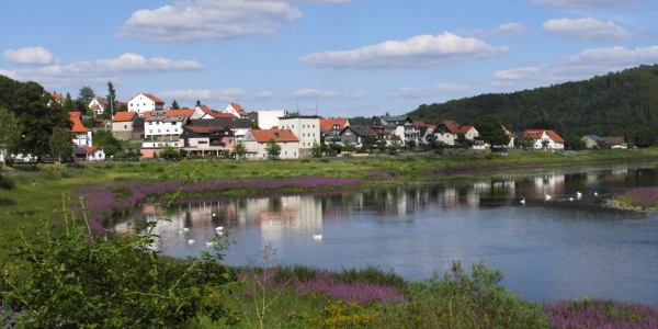 Seggenried in Herzhausen