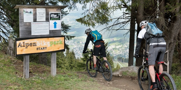 Variante bei der Abfahrt: Freeride-Trails Alpenbikepark Chur