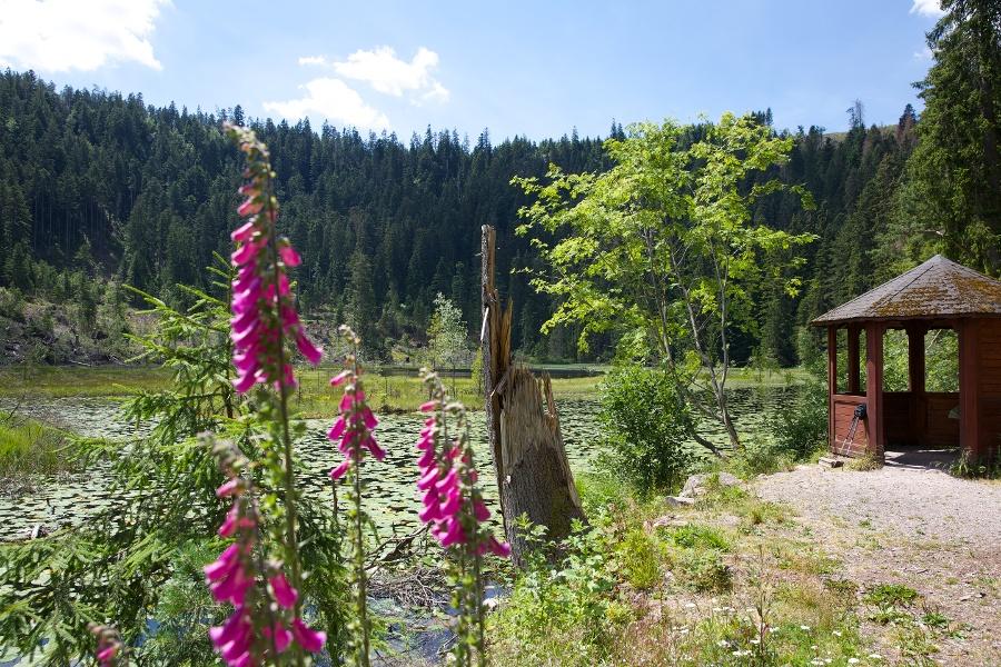Seensteig - Etappe 5: Die Krönung zum Schluss