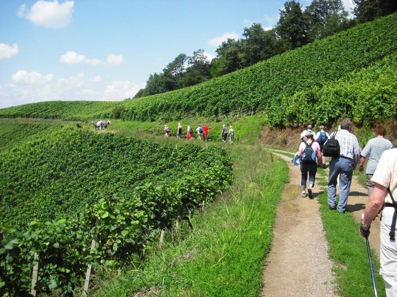 Aussichtsreiche Wanderung zwischen Glottertal und Suggental