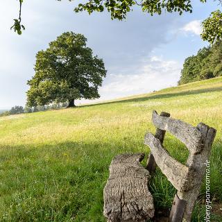 eines der schönsten Ruhebänke in der Allee des geologischen Lehr und Wanderpfads mit Blick auf Wittelshofen