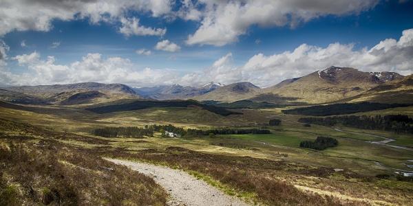 Toward the hills