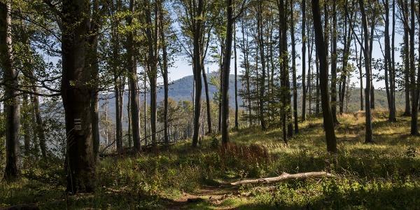 Along the ridge of Mátra
