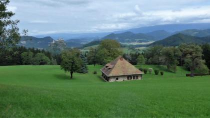 Almwiese mit Burg im Hintergrund