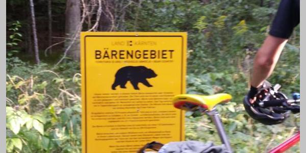 Bärengebiet am Weißensee.