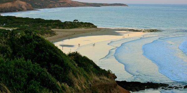 Torquay's picturesque coastline