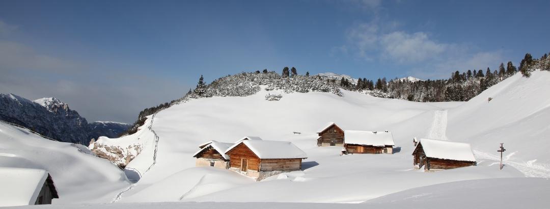 Winterlandschaft in der Ferienregion Kronplatz