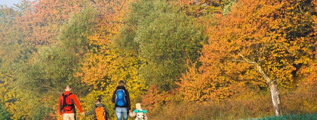 Wandern im Spessart-Mainland