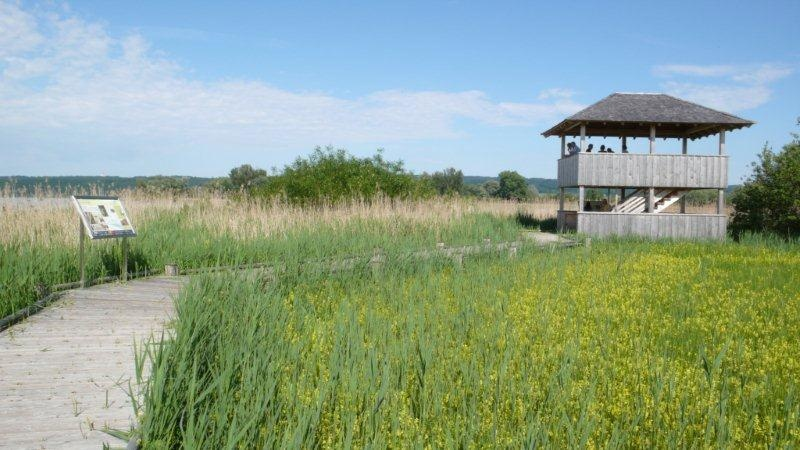 Beobachtungsturm im Natur- und Vogelschutzgebiet am Südufer des Ammersees ()