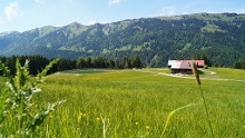 Ofterschwang cycle tour Forest-Meadows-Mountain
