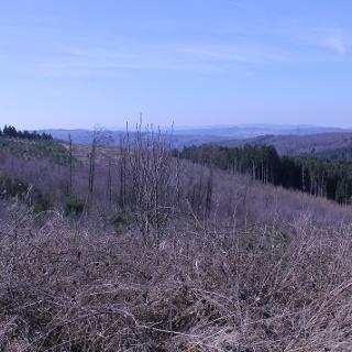 Ausblick von der Hubertushöhe Sundern