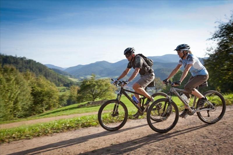 Mountainbiking im Gutachtal