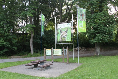 Sauerland-Waldroute mit Bus und Bahn: Von Hirschberg nach Bestwig (Westfalenbus)